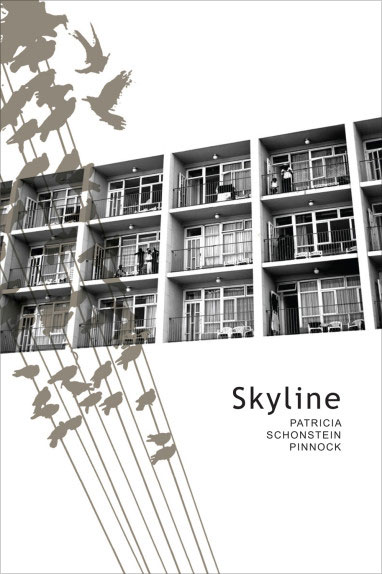 Front cover of the novel, Skyline