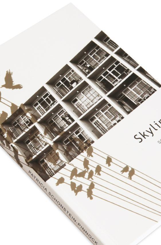 Cover detail of the novel, Skyline